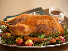 029_Roast-Goose-and-Stuffing_s4x3_al